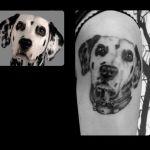 Portrait Tattoo von Xavielle Dalmatiner