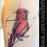Roter Kardinal Tattoo von Xavielle